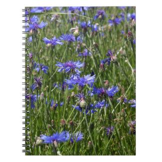 Blaue Cornflowers auf einem Gebiet Spiral Notizblock