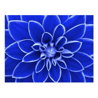 Blaue Dahlie-Blume Postkarte