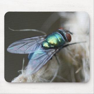 Blaue Flaschen-Fliege auf Garten-Schnur Mousepad