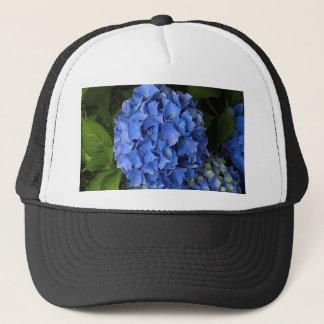 Blaue Hydrangea-Blume in Blüte 2 Truckerkappe