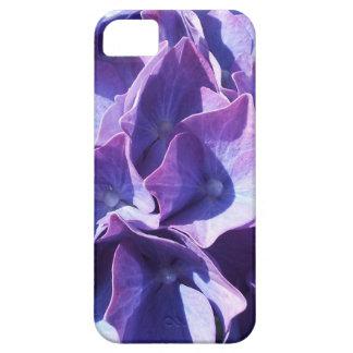 Blaue Hydrangea-Blumen-nahes hohes Foto iPhone 5 Etui