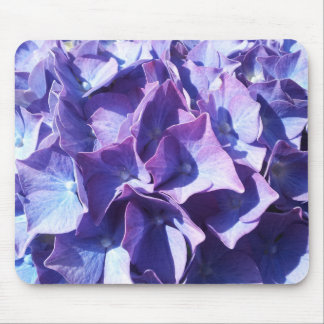 Blaue Hydrangea-Blumen-nahes hohes Foto Mousepad