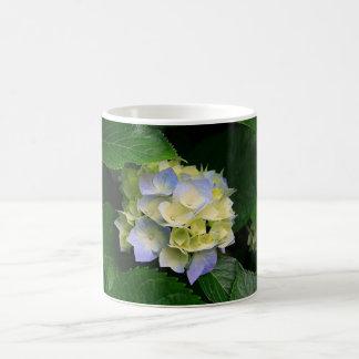 Blaue Hydrangea-Freude 11 Unze. Tasse