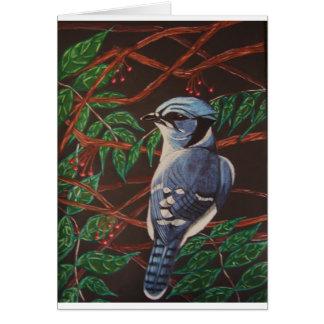 Blaue Jay Sammlung Grußkarte