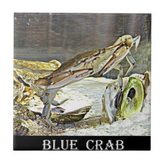 Blaue Krabbe Marylands Fliese
