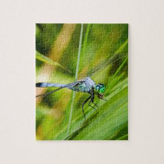 Blaue Libelle auf einem Blatt Puzzle
