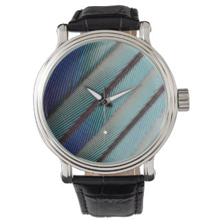 Blaue lila Breasted Rollenfeder Uhr