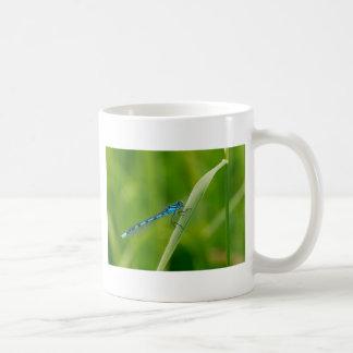 Blaue Maidfliege auf einem Grashalm Kaffeetasse