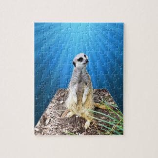 Blaue Meerkat Nacht, _ Puzzle
