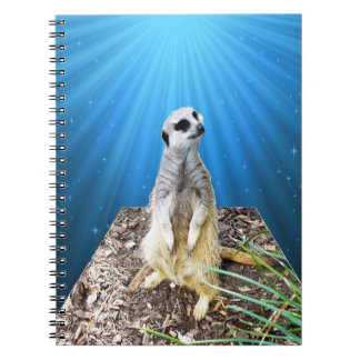 Blaue Meerkat Nacht, _ Spiral Notizblock