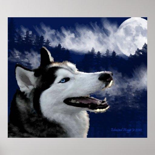 Blaue mit Augen alaskische Schlittenhund-Drucke Poster