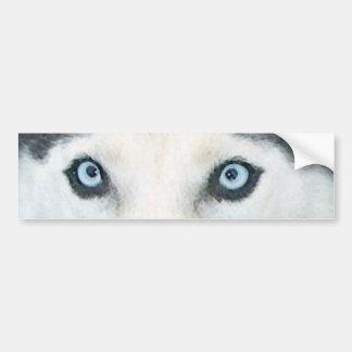 Blaue mit Augen Hunde können den Wind sehen Autoaufkleber