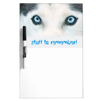 Blaue mit Augen Hunde können den Wind sehen Whiteboards
