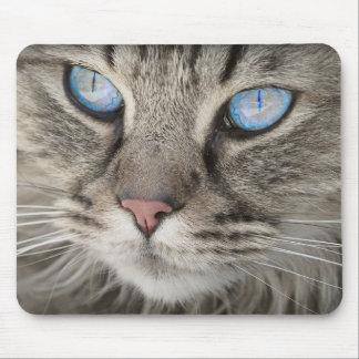 Blaue mit Augen Katze Mousemat Mauspad