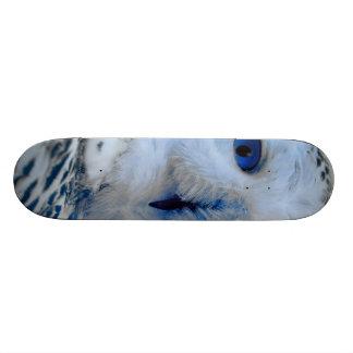 Blaue mit Augen Schneeeule 19,7 Cm Skateboard Deck