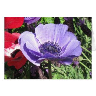 Blaue Mohnblumen-Blume Karte