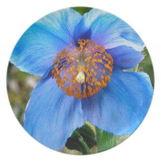 Blaue Mohnblumen-Platte Teller
