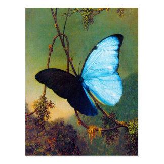 Blaue Morpho Schmetterlings-Postkarte Postkarten