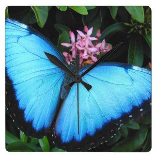 Blaue Morpho Schmetterlings-Wanduhr Quadratische Wanduhr