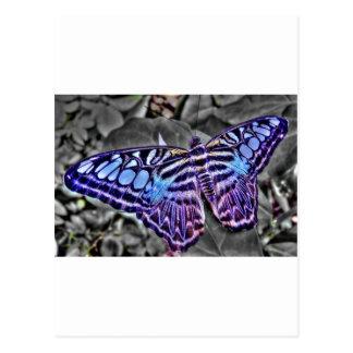 Blaue Motte Postkarte