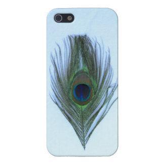 Blaue Pfau-Feder auf dem transparenten iPhone 5 iPhone 5 Schutzhülle
