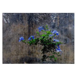 Blaue Plumbago-Blume Schneidebrett