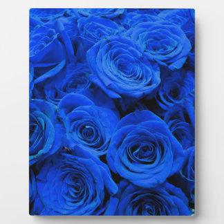 Blaue Rosen Fotoplatte