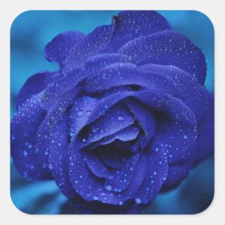 Blaue Rosen-mit BlumenBlume - Hochzeit Quadratischer Aufkleber
