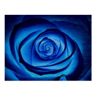 Blaue Rosen-Postkarte Postkarte