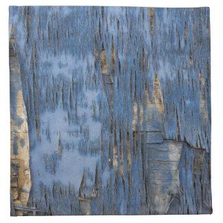 Blaue Schalen-Farben-Beschaffenheit Serviette