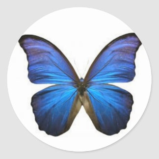 Blaue Schmetterlings-Aufkleber Runder Aufkleber