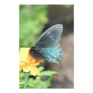 Blaue Schmetterlings-Gelbcoreopsis-Sommer-Produkte Briefpapier