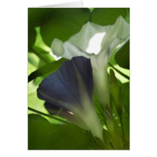 Blaue u. weiße Winden-Anmerkungskarte Karte