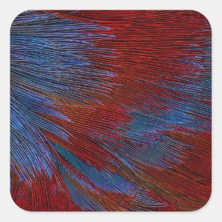 Blaue und rote Feder abstrakt Quadratischer Aufkleber