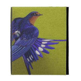 Blaue Vogel-Scheunen-Schwalbe