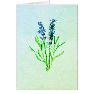 Blauer Dilly des Lavendels der Dilly Karte