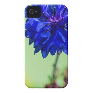 Blauer frischer Cornflower auf Grün unscharfem iPhone 4 Hüllen