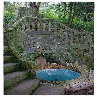 Blauer Garten-Brunnen Serviette