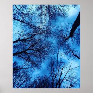 Blauer Himmel auf schwarzen Bäumen fotografieren Poster