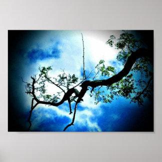 Blauer Himmel Poster