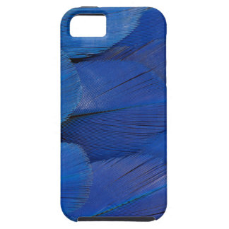 Blauer Hyazinthemacaw-Feder-Entwurf iPhone 5 Hülle