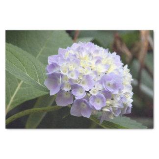 Blauer Hydrangea 7636 Seidenpapier