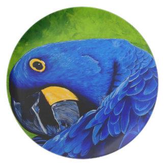 Blauer Macaw Flache Teller
