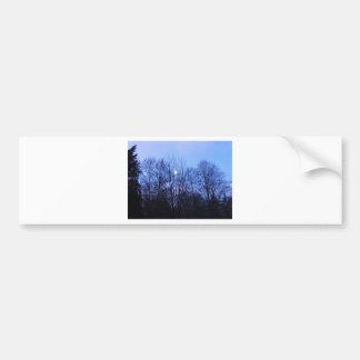 Blauer Mond-Hochzeits-Papiere Autoaufkleber
