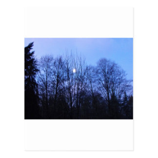 Blauer Mond-Hochzeits-Papiere Postkarte