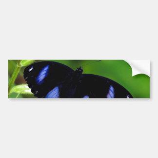 Blauer Mond-Schmetterling großes Eggfly in Autoaufkleber
