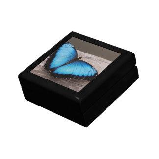 Blauer Morpho Schmetterling Kleine Quadratische Schatulle