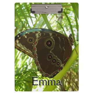 Blauer Morpho Schmetterlings-tropische Klemmbrett