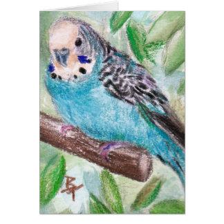 Blauer Parakeet-leere Karte