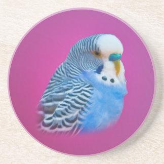 Blauer Parakeet-Untersetzer Untersatz